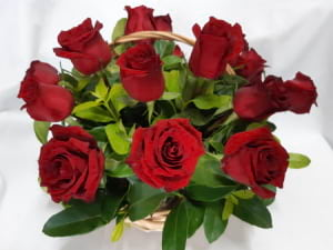 18 Red Roses in a Basket