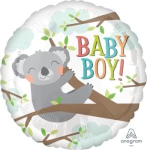 Baby Boy Koala