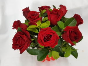 10 Premium Red Roses in Box Arrangement